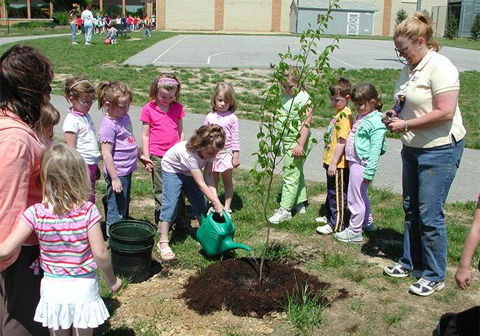 RCVA Tree Planting