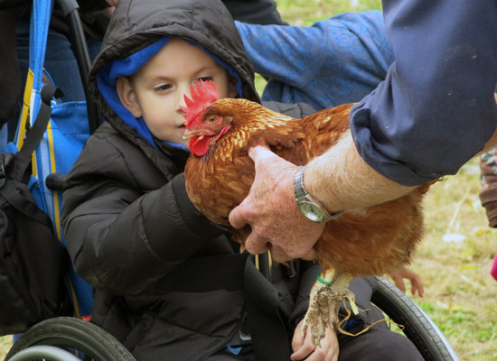 ARC-of-Chester-County--boy-with-rooster